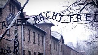 "Calling Political Opponents ""Nazis"" Diminishes the Holocaust"