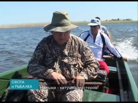 видео про рыбалку в проводку