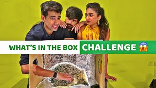 What's in the Box Challenge   Rimorav Vlogs