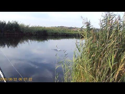 рыбалка на река миус донецкая область