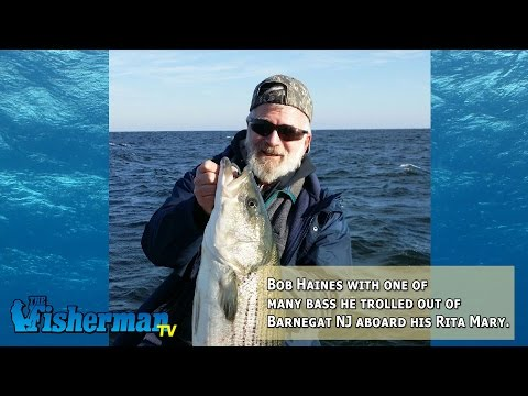 November 25, 2014 New Jersey/Delaware Bay Fishing Report with Chris Lido