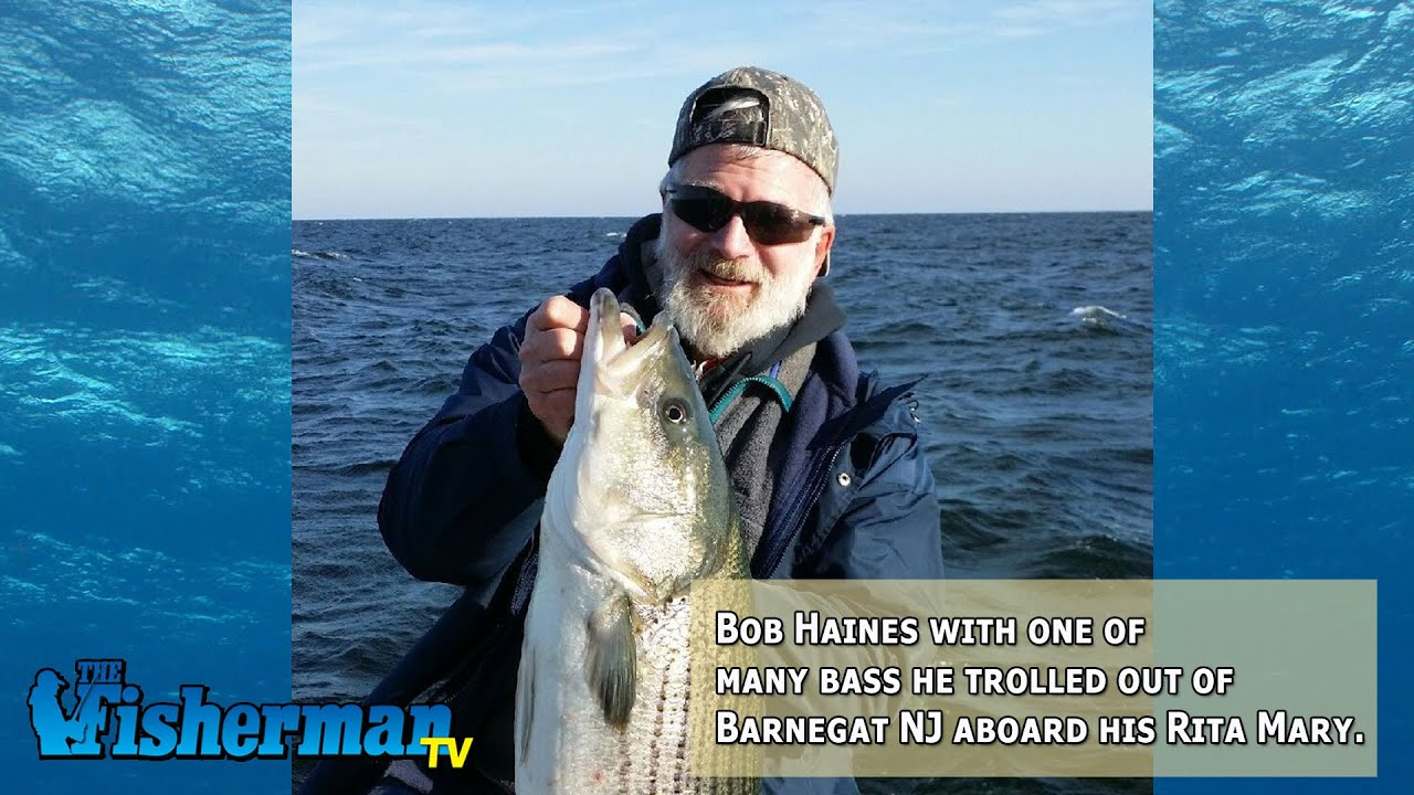 November 25  2014 New Jersey Delaware Bay Fishing Report with Chris Lido