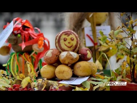 Героиня фестиваля картошечка  Фалёнки
