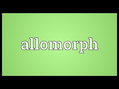 Header of allomorph