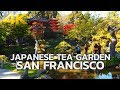 SAN FRANCISCO - Japanese Tea Garden, Golden Gate Park, San Francisco, California, USA, Travel 4K UHD