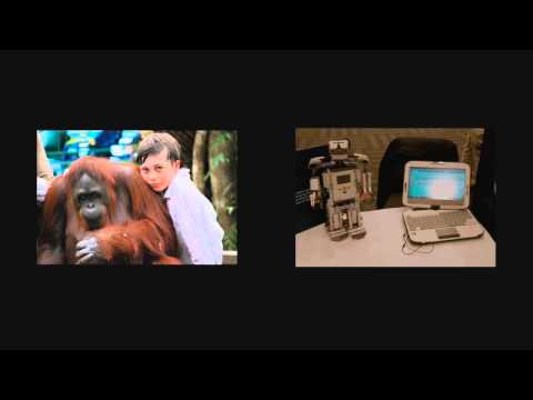 saving Endangered Species Movie:  School Assemblies video