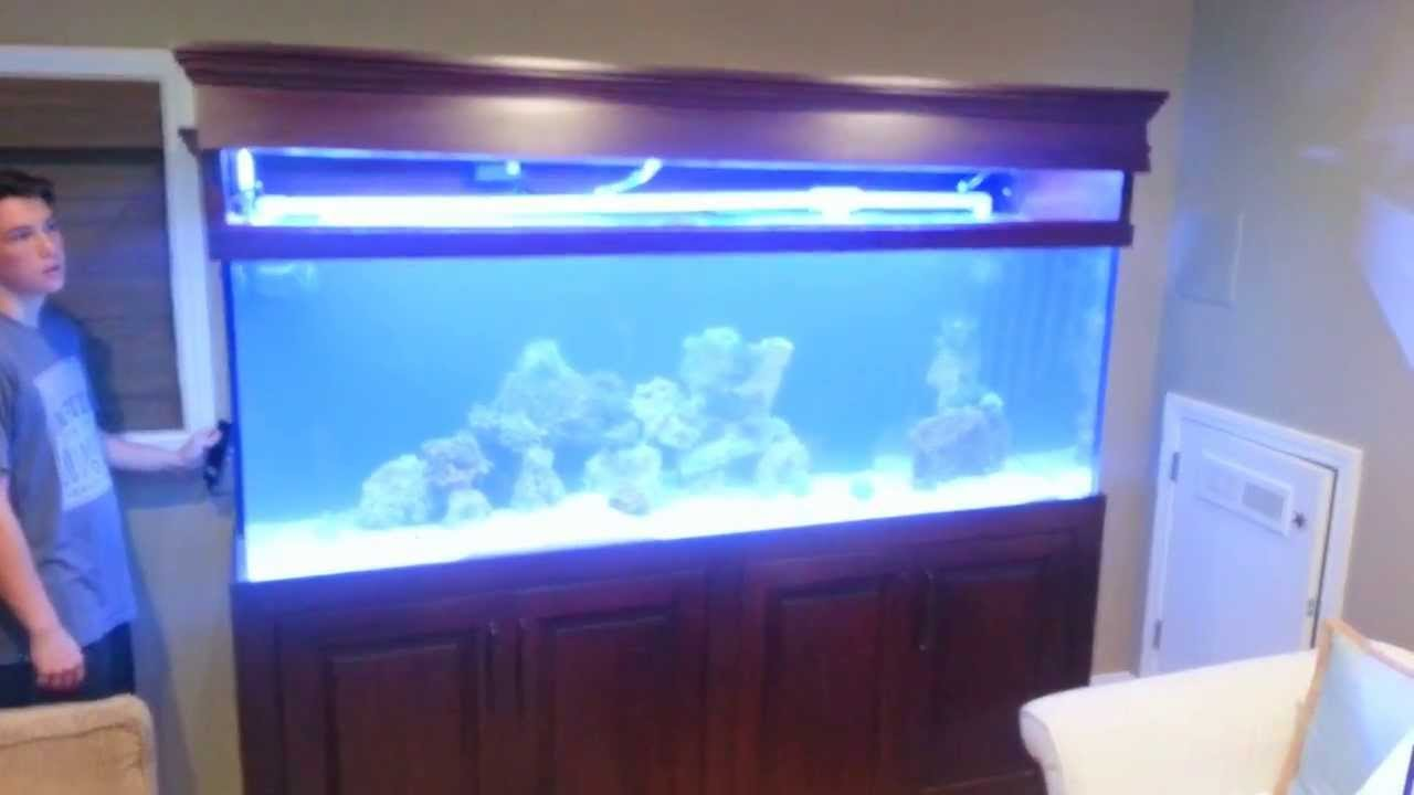 Reef Aquarium Canopy Lifted By Electric Linear Actuator