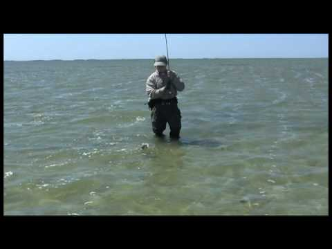 April Redfish on the Sand of the Lower Laguna Madre, with Capt. Scott Sparrow