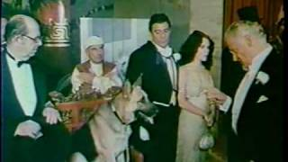 Won Ton Ton The Dog Who Saved Hollywood 1976 trailer
