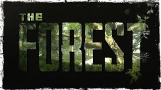 The Forest Co-op Начало.