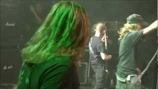 (16.9 MB) Cerebral bore live mountains of death 2010 dvd Mp3