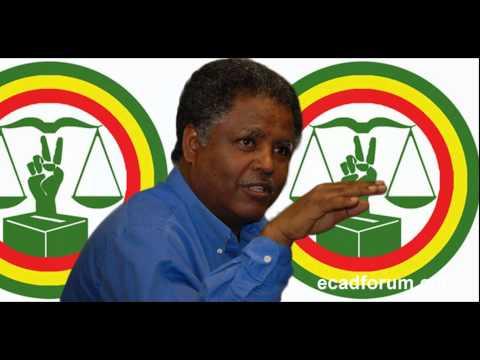 VOA Amharic about Andargachew Tsige