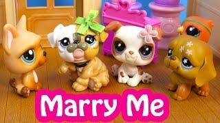 Download LPS Marry Me Mommies Part 54 Littlest Pet Shop Series Video Movie LPS Mom Babies Cookieswirlc 3Gp Mp4