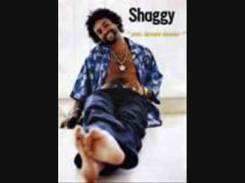 Shaggy- Mr. Boombastic (lyrics) video