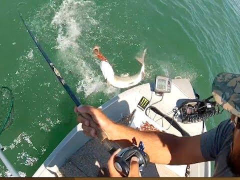 Fishing Muskie Canada