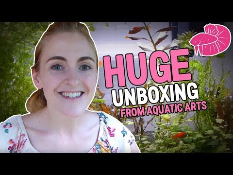 Big Haul! Unboxing Fish. Inverts and Plants from Aquatic Arts