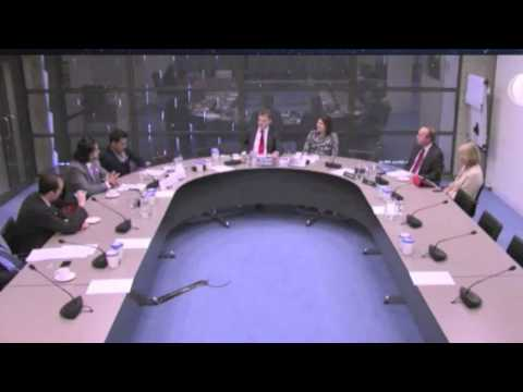 Mehran Baluch speaks at foreign affairs committee of the Dutch parliament 16-04-2013