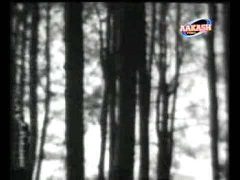 Dulhan Ek Raat Ki   Ek Haseen Sham Ko Dil Mera Kho Gaya video