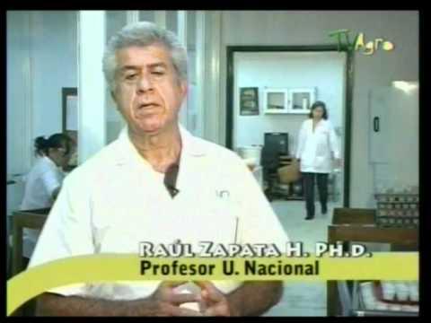 ANÁLISIS QUÍMICO DE SUELOS 1 de 2