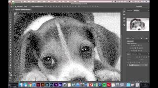 Photoshop Turning Image into a Bitmap