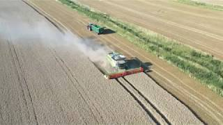 Harvest19 Claas Lexion 770 Combine Harvester