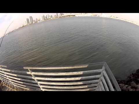 Los Amigos Invisibles - Fishing Rod