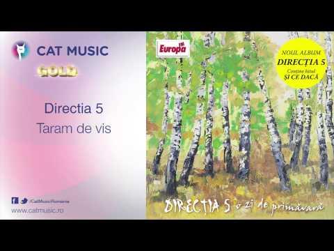 Directia 5 - Taram De Vis