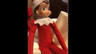 Elf on the Shelf and Santa || ViralHog