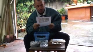 Recibiendo cartas para regalar semillas otoño 2014.