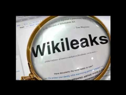 BREAKING- New Anon video- More Wikileaks guidance???