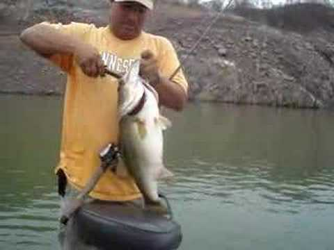 Lake Baccarac Bass 43