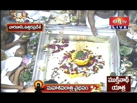 Kashi Vishwanath Maha Shivaratri Abhishekam - Live Visuals video