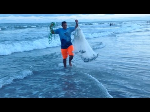 Myrtle beach fishing videos for Myrtle beach surf fishing report