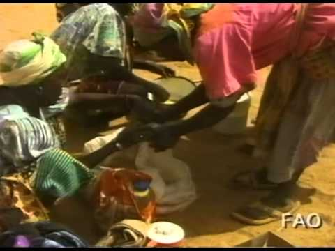 Women Feed the World: Africa