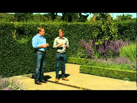 Better youtube Better homes and gardens channel 7