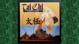 Tai Chi 太極 Serenity Through Meditation Of Tranquil Soul