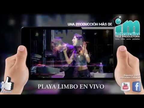 PLAYA LIMBO EN CONCIERTO - AJALPAN PUEBLA 2014
