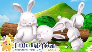 Sleeping Bunnies Song - Nursery Rhymes and Baby Songs | Songs For Kids | Little Baby Bum