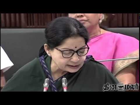 Tamilnadu Chief Minister Jayalalithaa On New School - Dinamalar July 30th News video