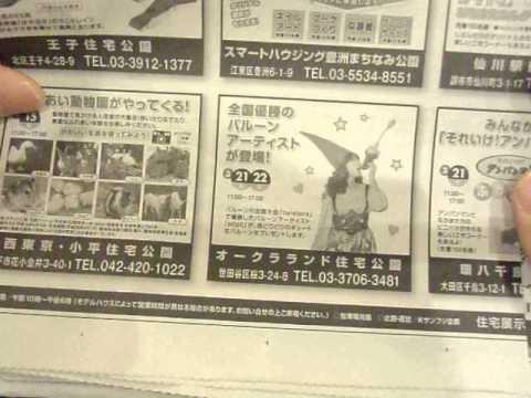 GEDC1980 2015.03.13 nikkei news paper