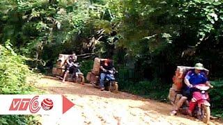 Quảng Nam bất lực trước nạn vận chuyển gỗ lậu   VTC