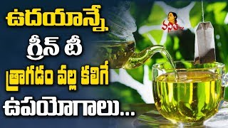 Health Benefits Of Drinking Green Tea Daily || Health & Beauty Tips || Vanitha TV