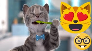 Time To Go School For My Little Kitten & Friends - Fun Pet Care Kids Game