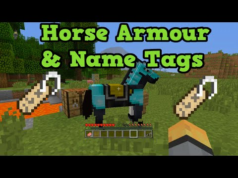 Minecraft Xbox + PS3: Horse Armor & Name Tags Tutorial W/ Locations