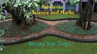 Binary Star Trees   Kannada