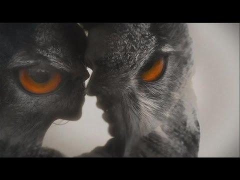 Dix Albums Studio Pour David Gray - Le Mag video