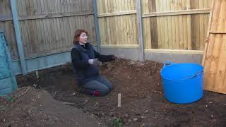 More interesting finds - Claire's Allotment Part 388