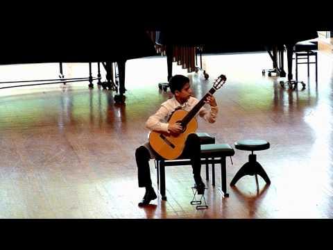 Antonio Lauro: Venezuelan Waltz No. 2 - Vidak Micovic (1999), guitar