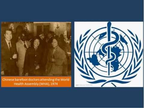 Global Health Histories seminar 69:  Traditional Chinese medicine