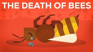 The Death Of Bees Explained - Parasites, Poison and Humans